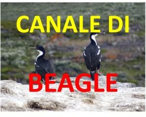 Canale di Beagle