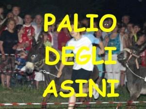 PALIO DEGLI ASINI
