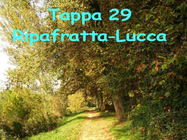 Tappa 29