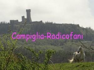 Sampiglia-Radicofani