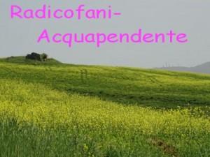 Radicofani-Acquapendente
